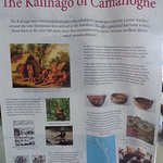 about the Kalinago