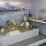 Photo of Museo Maritimo y del Presidio de Ushuaia