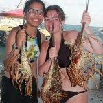 Lobster for dinner?
