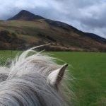 See Arran on horseback