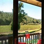 View of Korbel vineyard from room 126