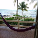 The view from the bedroom of our private patio and hammock.