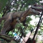 Photo of Sao Paulo Zoo
