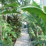 Photo of Jardin Botanico Benjamin F. Johnston