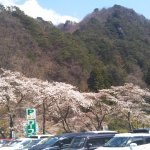 Foto de Kanazakura Shrine