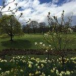 Foto de Swinton Park