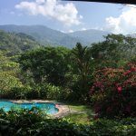 Photo of La Cacatua Lodge