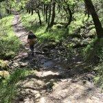 Crossing a tiny creek.