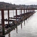 On a pier off the Riverwalk
