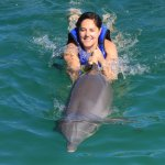 que mejor nadar con delfines ahhh