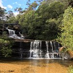 top of wentworth falls near steps going down