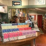 Sherri Reeve store