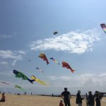 Kite festival happening at the park.