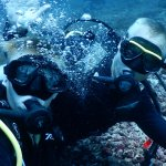 Photo de Divine Diving