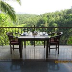 Morning breakfast with backdrop of rain forest.