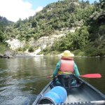 paddling back to Pipiriki