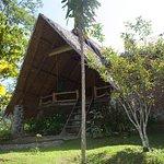 Stream bungalow