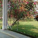 Bonani Lodge Foto