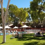 Beautiful grassed area near the pool to relax in under the shade of the gum trees