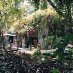 Chinese 兰圃公园 (Lánpǔ Gōngyuán)