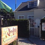 Welcome to Jembjo's Knysna Lodge & Backpackers
