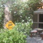 Villa Sunflower