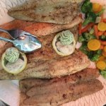 Zander-, Wels-, Maränen-, Barsch- und Lachsforellenfilet