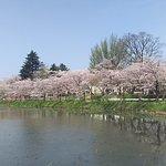 Takada Park Foto