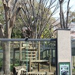 Photo of Ueno Zoo