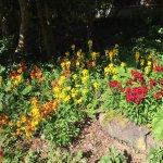 Photo of Jardin des Olfacties