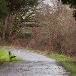 Homewood Suites by Hilton Seattle-Tacoma Airport/Tukwila Foto