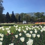 Photo de Parc du Thabor