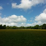Photo of Ashridge Estate