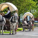Pioneer Trails Wagon Train