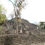 Photo of Museo de Naturaleza y Arqueologia de Calakmul
