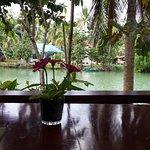 Изображение Loboc River Resort
