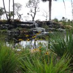 Photo de Naples Botanical Garden