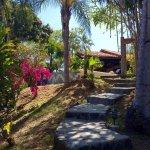 Un sueño en la Selva ! Ein Traum in der Jungle