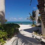 Mayan Beach Garden-billede