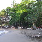 Photo of Puerto Viejo Beach