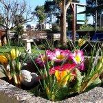 Glenlee's patio and front garden looks across to Beach Gardens