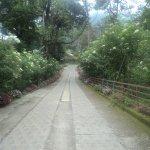 Deep Woods Resort Foto