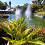 Lake and Fountain