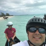 Selfies are a trick on a horse!