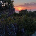 Coucher de soleil dans la mer, depuis les jardins