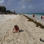 Beach in front of Dreams Riviera Cancun April 2017