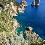 Capri coast from the island.