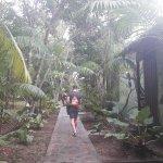 Amazon Antonio Jungle Tours - Day Tour Foto