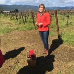 Tour guide with Vineyards