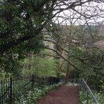 Alexandra Park Foto